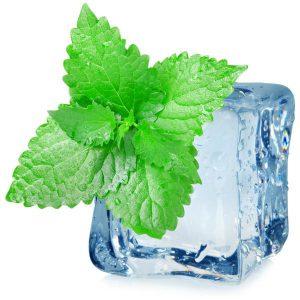 Purilum Arctic Mint