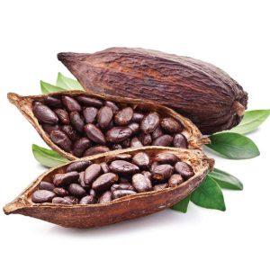 FlavourArt Cocoa