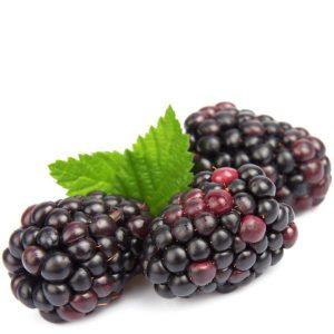 Flavorah Boysenberry